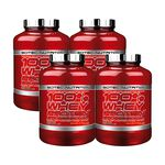 4 x 100% Whey Protein Professional, 2350 g, BIG BUY