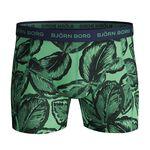 3-Pack Sammy Shorts BB Leafy, Lichen, L